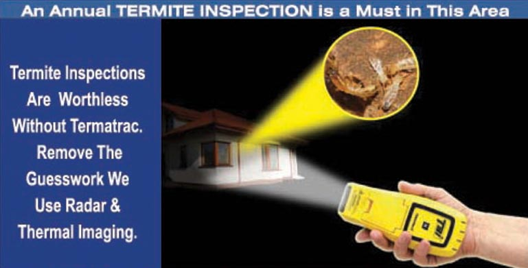 termite eradication liverpool